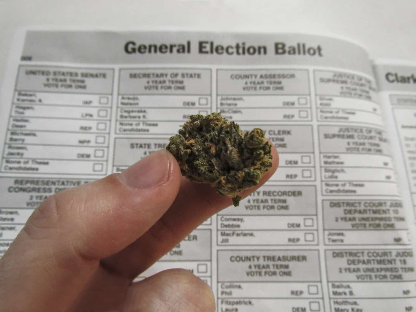 cannabis in front of a Nevada sample ballot