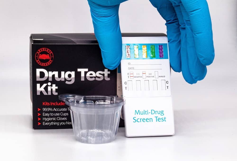 synthetic urine test kit review