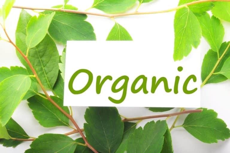 organic-cbd