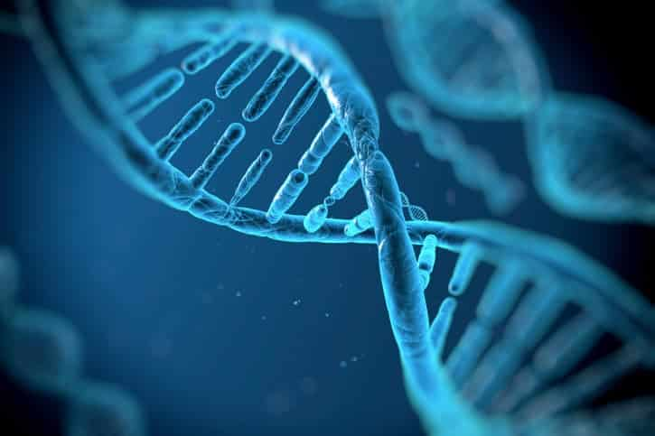 effects of smoking on dna