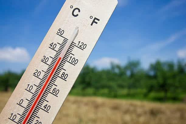 weed-temperature
