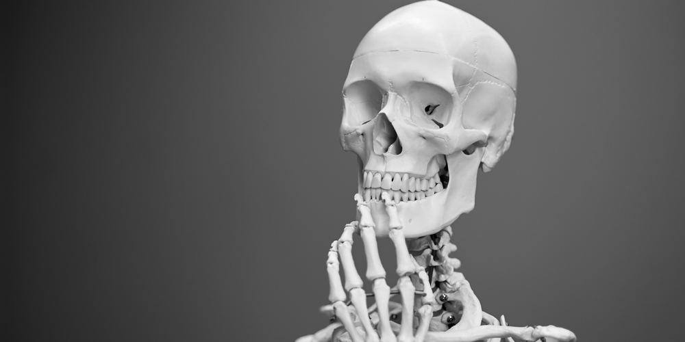 human skeleton against gray background