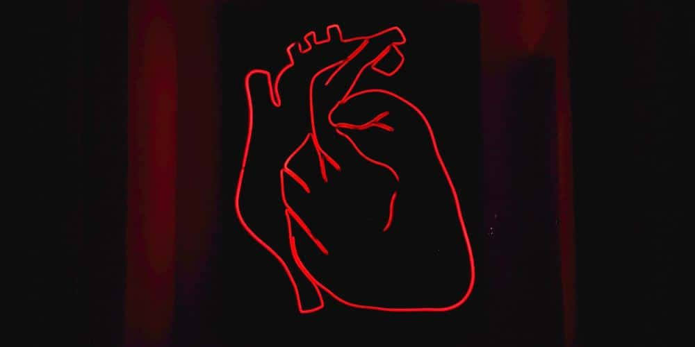 An outline of the human heart in red neon